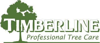 Timberline Tree Care Service